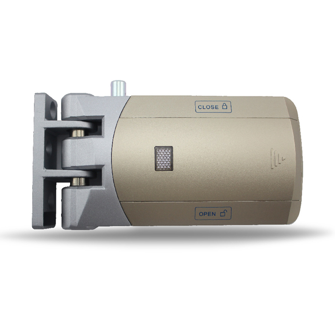 DB61 Invisible anti-theft electric door lock